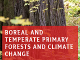 Boreal & temperate primary forests and climate change